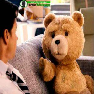 imágenes de TED el OSO (10)