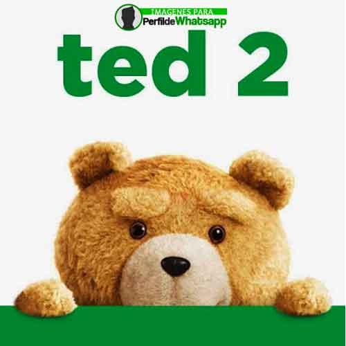 imágenes de TED el OSO (11)