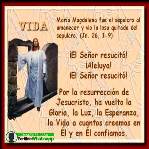 imágenes-de-jesus-sacramentado