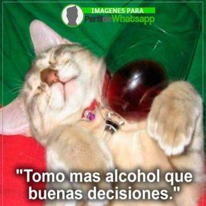 imágenes graciosas de borrachos 37