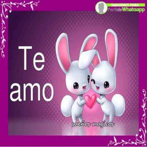 te-amo-10