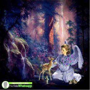 imagenes de hadas y duendes