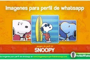 frases de Snoopy