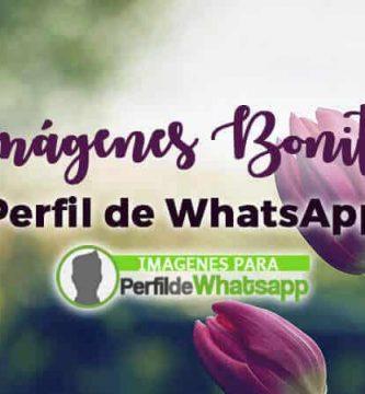 Imágenes bonitas para perfil de WhatsApp