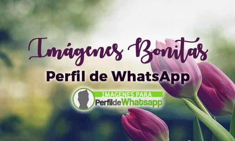 Imagenes Bonitas Para Whatsapp Con Frases