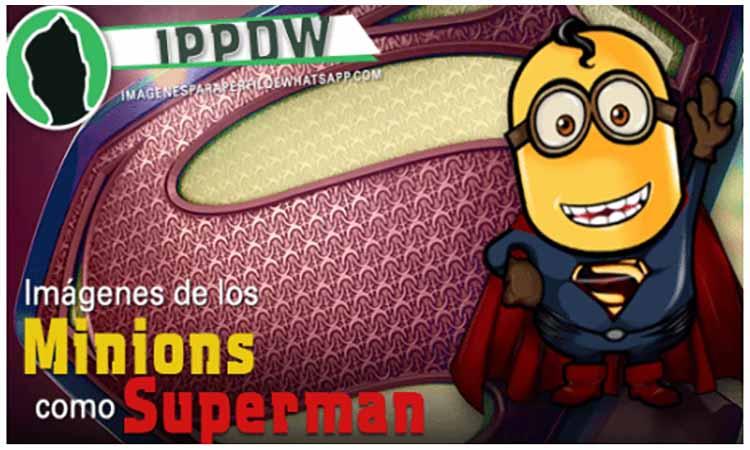 minions como superman