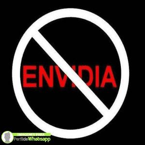 envidia 8