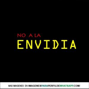envidia 9