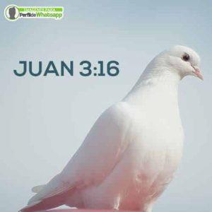 fotos cristianas para celular gratis