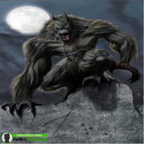 hombre lobo 11