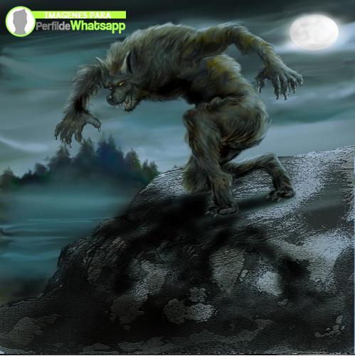 hombre lobo 13