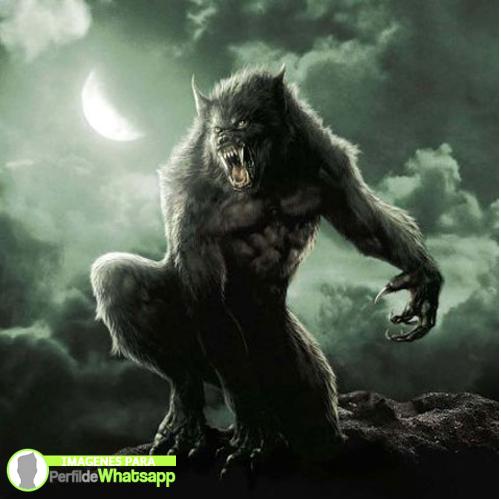hombre lobo 14