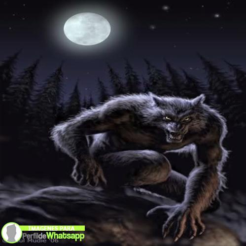 hombre lobo 17
