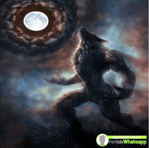hombre lobo 26