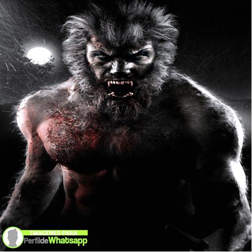 hombre lobo 6