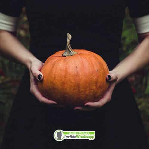 imagenes de halloween brujitas