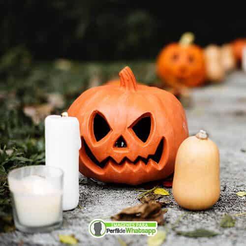 imagenes de halloween calabazas gratis
