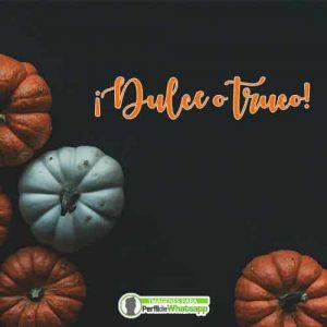 imagenes de halloween dulce o truco