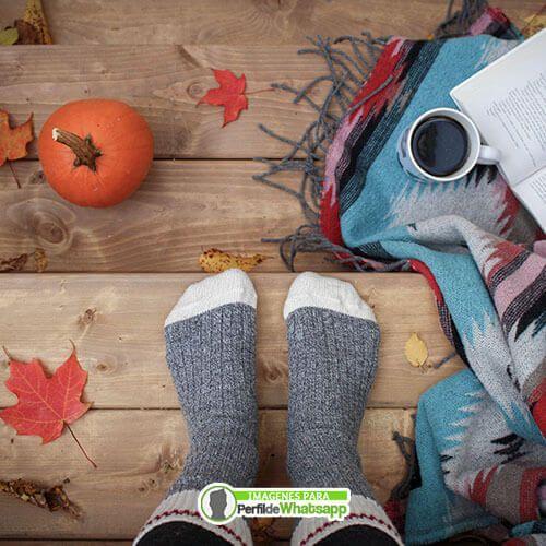imagenes de halloween para descargar gratis