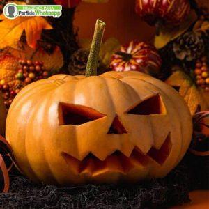 imagenes de halloween para descargar y compartir