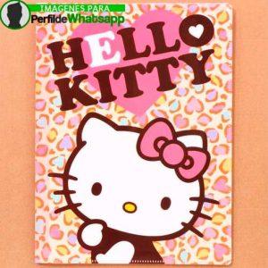imágenes de hello kitty 7