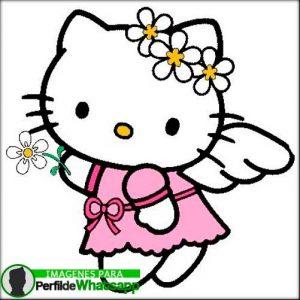 imágenes de hello kitty 11