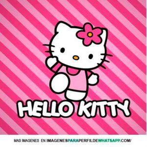 imágenes de hello kitty 15