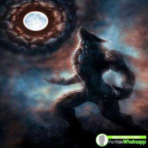 imágenes de hombre lobo 19