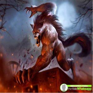 imágenes de hombre lobo 21