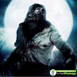 imágenes de hombre lobo 31