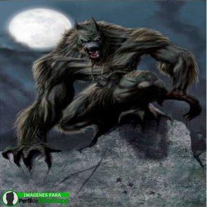 imágenes de hombre lobo 33