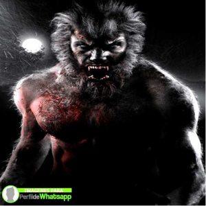 imágenes de hombre lobo 35