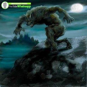 imágenes de hombre lobo 37