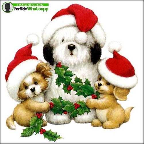 imagenes de feliz navidad para mi amor