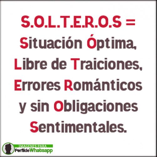 solteria 12
