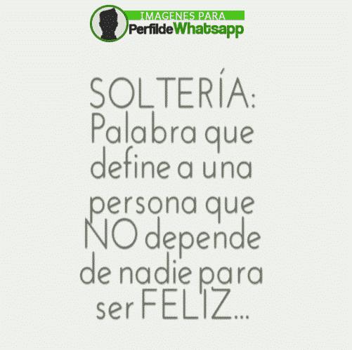 solteria 15