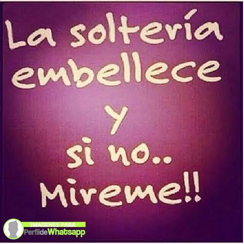 solteria 6