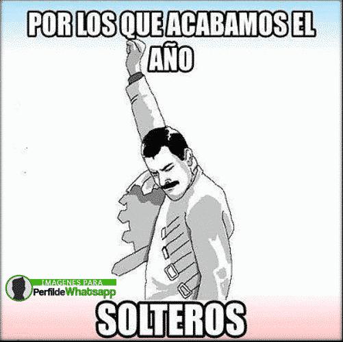 solteria 8